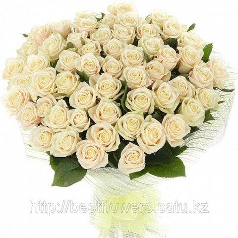 Букет из 51 белой розы (60 см)