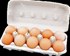 """Яйцо куриное домашнее """"Подворье Алтая"""" 10 шт"""