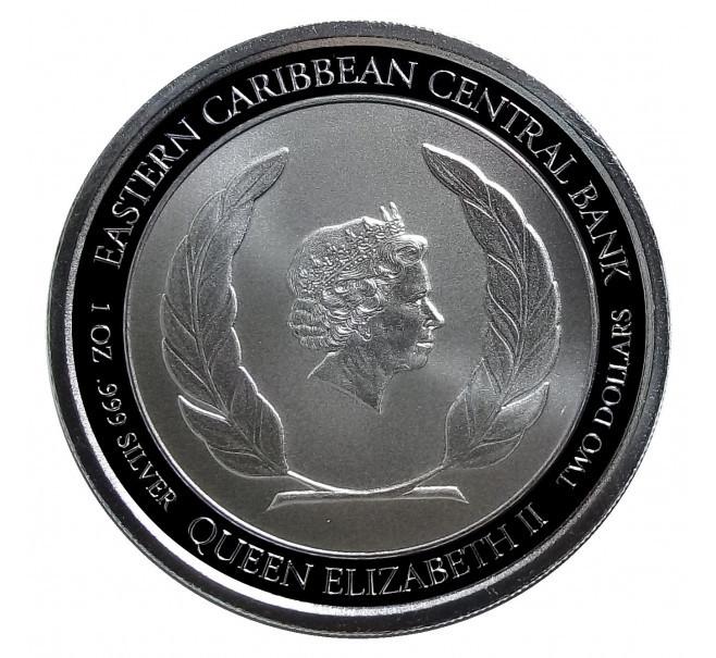 2 доллара 2018 Доминика. Остров природы Самолет Восточные Карибы. Серебро