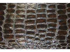 Искусственная кожа Caiman (Кайман) 91-5179