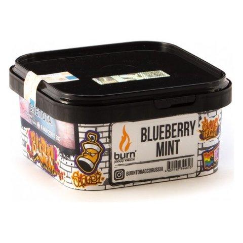 Табак Burn Blueberry Mint (Черника и Мята) 200г