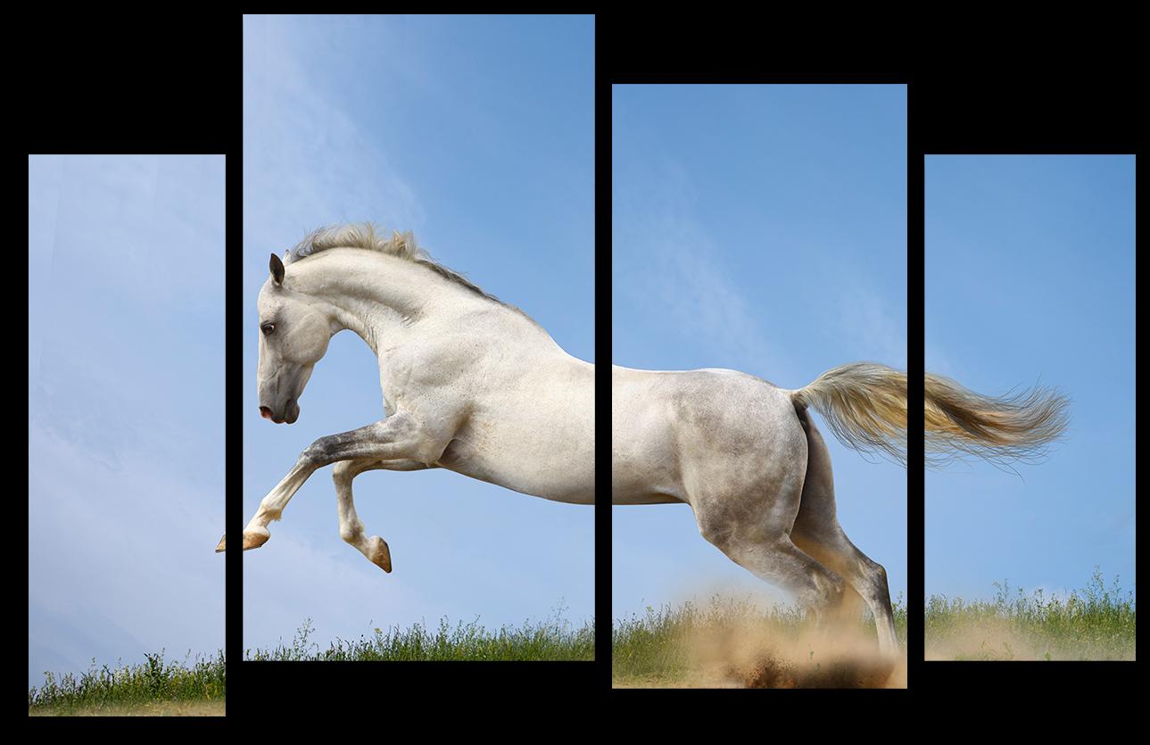 """Модульные картины Модульная картина """"Лошадь в прыжке"""" М974.png"""