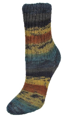 Пряжа для носков Rellana Flotte Socke Winterwald 1251