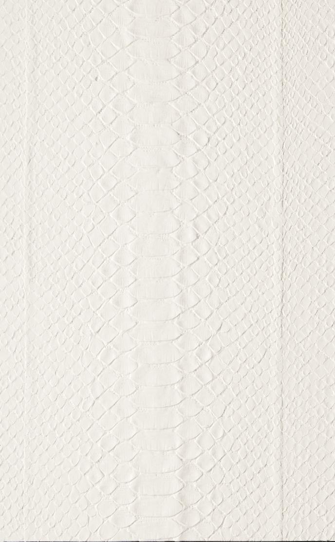 15043 Snake bianco