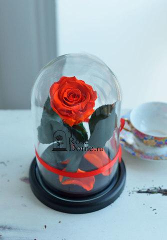 Роза в колбе Mini ОПТОМ Выс*Диам*Бутон (22*12.5*6см), Цвет оранжевая