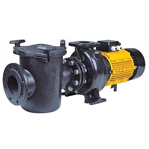 Насос CFRP55-80 с префильтром чугунный 75 м3/час 4,0кВт 380В PoolKing