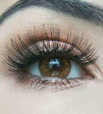 цветные линзы медовые с ободком для темных глаз MARQUISE