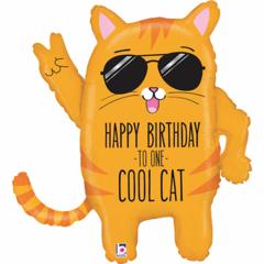 Б Фигура, Классный кот, Happy birthday, 33