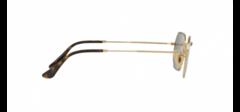 Octagonal Flat Lenses RB3556N 001/9O