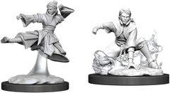 D&D Nolzur's Marvelous Miniatures - Female Human Monk