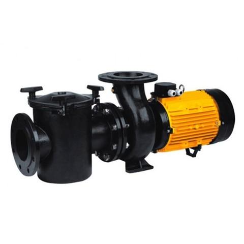 Насос CFRP125-125-11 с префильтром чугунный 165-195 м3/час 11 кВт 380В PoolKing