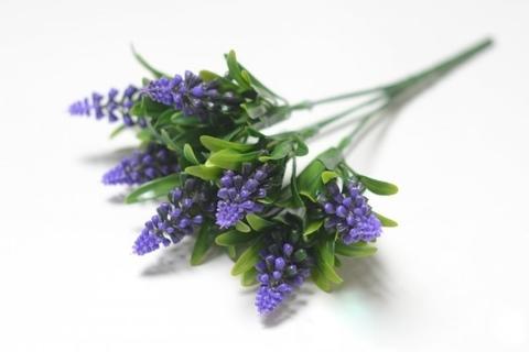 Букет лаванды фиолетовый