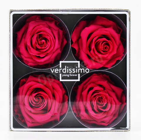 Стабилизированный Бутон Розы Verdissimo (Франция). Цвет Фуксия (Диаметр 7-8см)