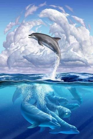 Алмазная Мозаика 40x50 Прыжок дельфина (арт. SGL73239 )