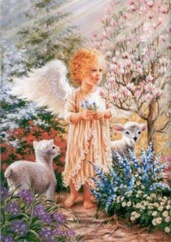Картина раскраска по номерам 40x50 Ангелочек с барашками