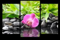"""Модульная картина """"Розовая орхидея"""""""
