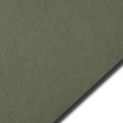Кардсток болотного цвета, 270 гр