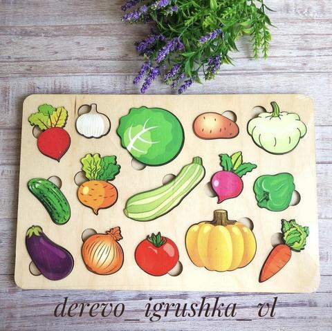 Вкладыш овощи большой