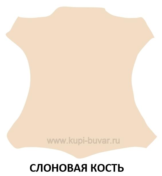 Цвет слоновая кость кожи Cuoietto для бювара модель 4.