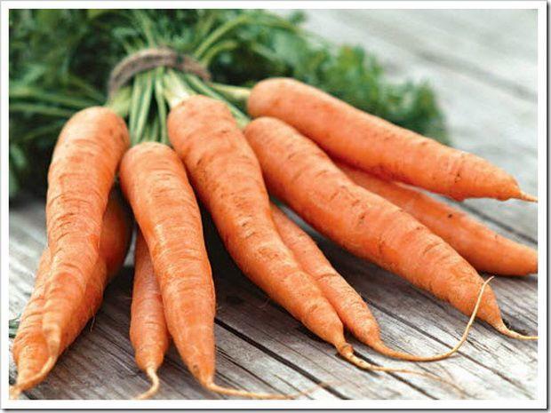 Syngenta Шантенэ а кур руж 2 семена моркови курода/шантане (Syngenta / Сингента) Шантане_А_Кур_Руж_2_семена_овощей_оптом.jpg