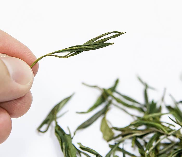 TEA-CH102-2 Зеленый чай «Ворсистые пики с желтой горы» (Хуан Шань Мао Фэн, 50 гр) фото 04