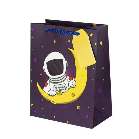 Пакет подарочный Space 18*23*10 4