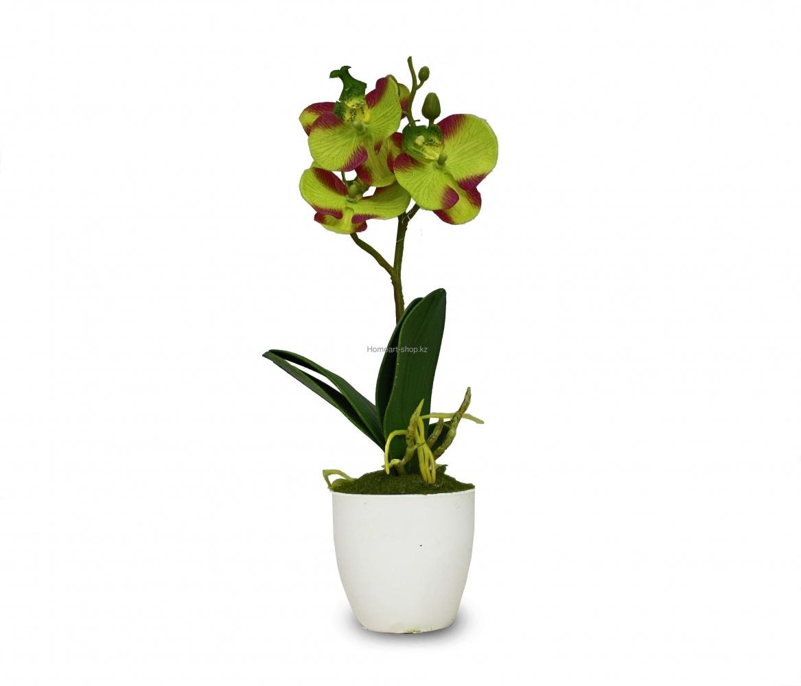 Орхидея в горшке, исскуственное растение.