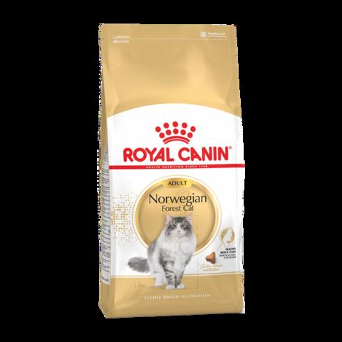 Royal Canin Norwegian Forest Cat Сухой корм для кошек породы норвежская лесная