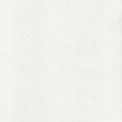 Искусственная кожа Polo perlamutr milk (Поло перламутр милк)