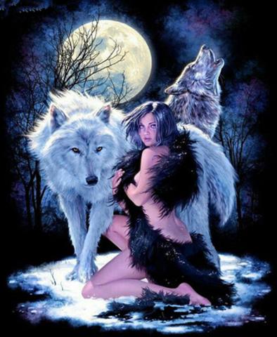 Алмазная Мозаика 30x40 Девушка и волки