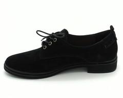 Черные полуботинки из натурального велюра на низком каблуке