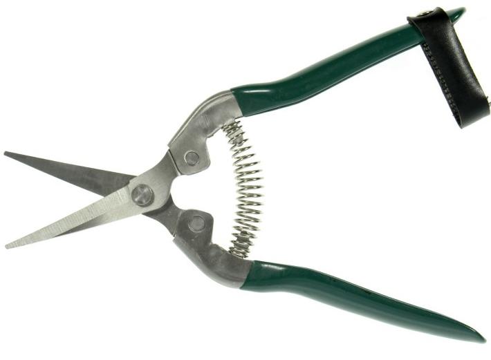 Ножницы для сбора плодов Alvaro Bernardoni AB300