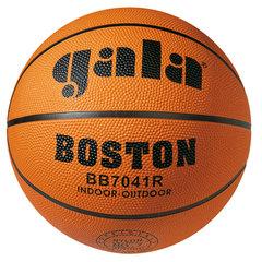 Баскетбольный мяч BOSTON 7