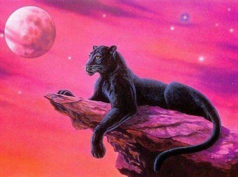 Алмазная Мозаика 20x30 Черная пантера на скале (арт. SGC5116 )