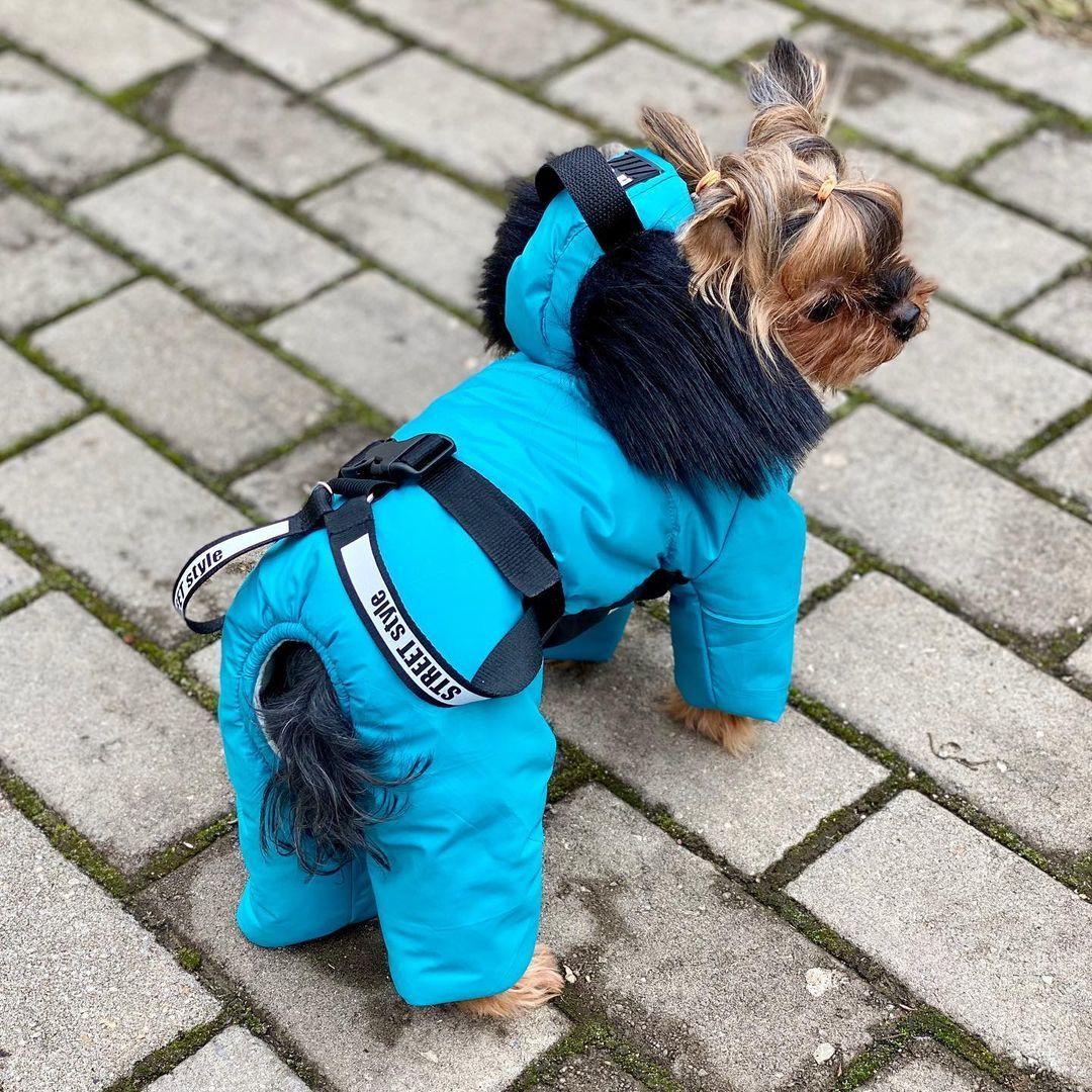 104 LM - Комбинезоны для собак