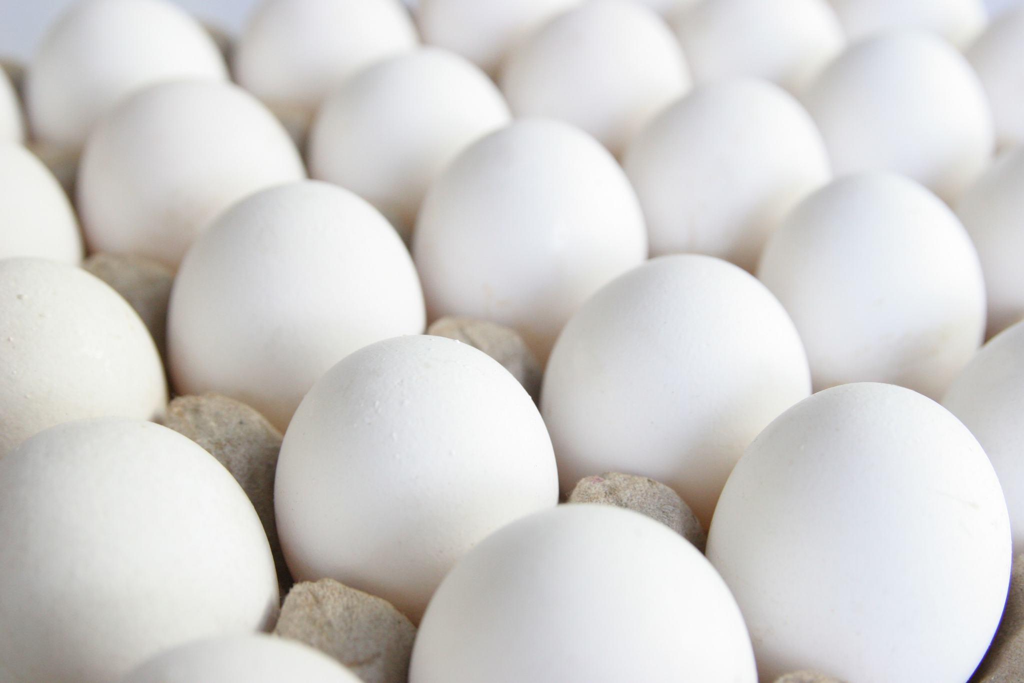 Яйцо куриное, Аккус  отборное