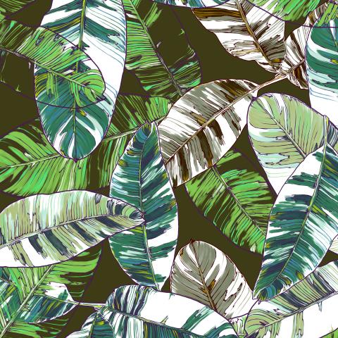 листья банана_04