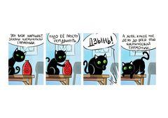 Кошки-мышки. Подвиг каждый день