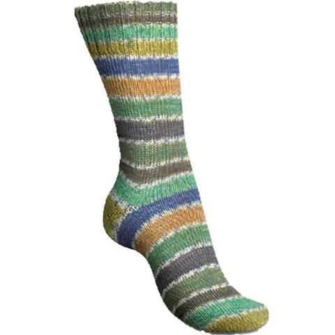 Regia Etude Color 4896 пряжа для носков купить