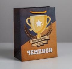 Пакет ламинированный вертикальный «Чемпиону», MS 18 × 23 × 10 см, 1 шт.