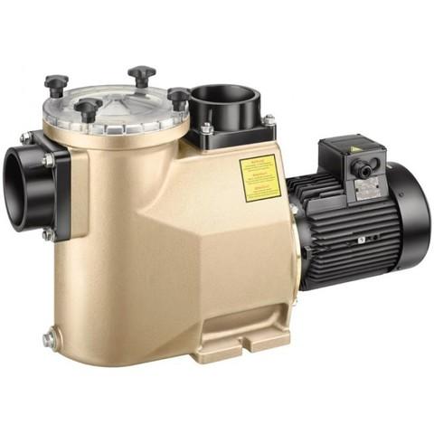 Насос BADU 93/50 с префильтром бронзовый 53 м3/ч 3,00 кВт 380В Speck Pumpen