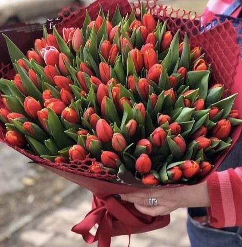 101 тюльпан в оформлении #454554