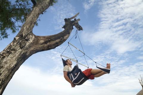 Подвесные кресло повысили на высоком дереве.