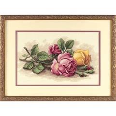 DIMENSIONS Срезанные розы (Rose Cuttings)