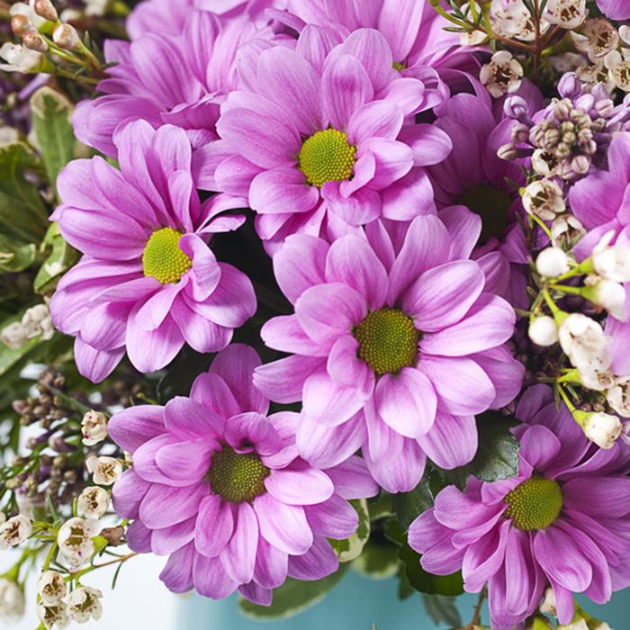 Купить ромашковые хризантемы ярко-розовые букет в Перми