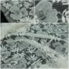 Кружевное полотно RM Ecru Fleur