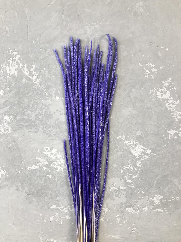 Флум фиолетовый