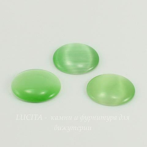Кабошон Кошачий глаз светло-зеленый (20х4-5 мм) ()