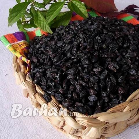 Барбарис черный