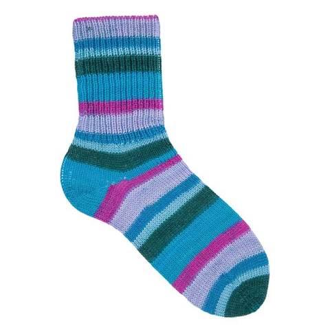 Gruendl Hot Socks Gardola 6-ply 05 купить